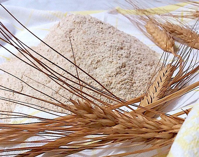 Farina di grano Senatore Cappelli